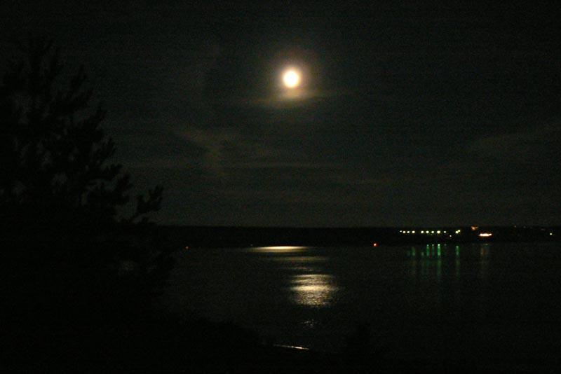 Пейзаж в лунном свете