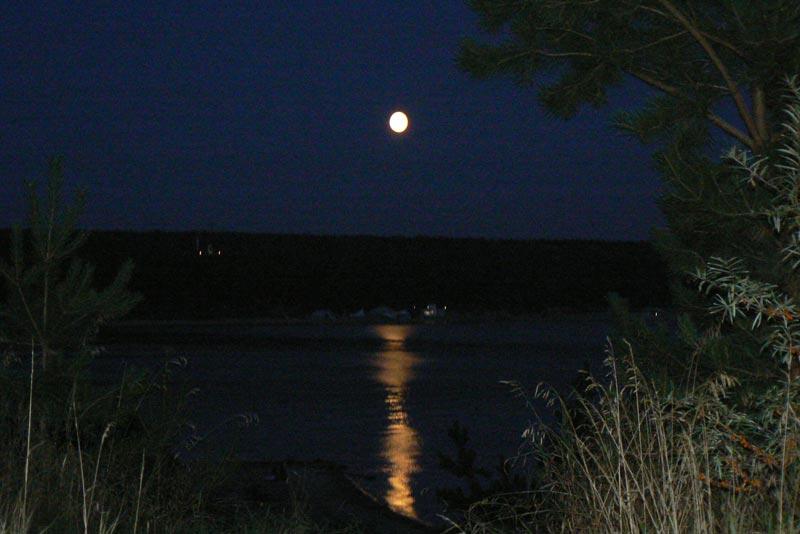Осенняя Луна сосну рисует тушью