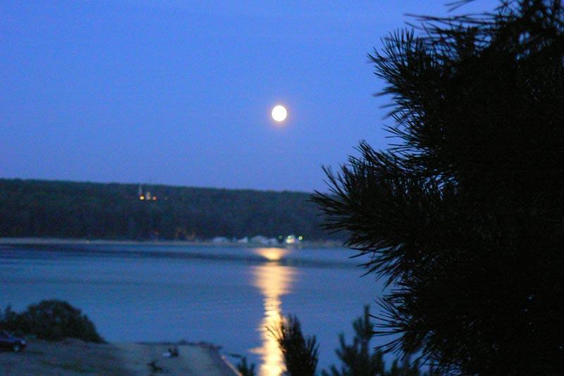Луна и сосна