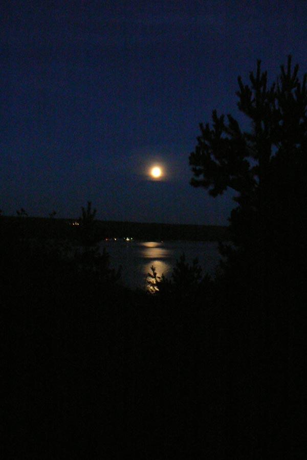 Ночной пейзаж с лунной дорожкой