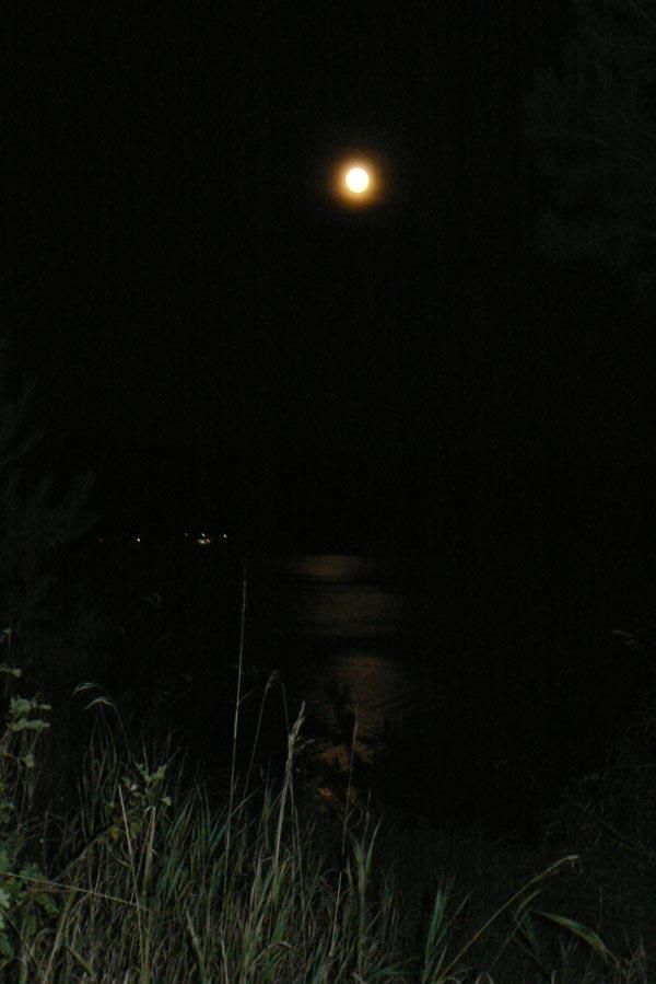 Лунная графика