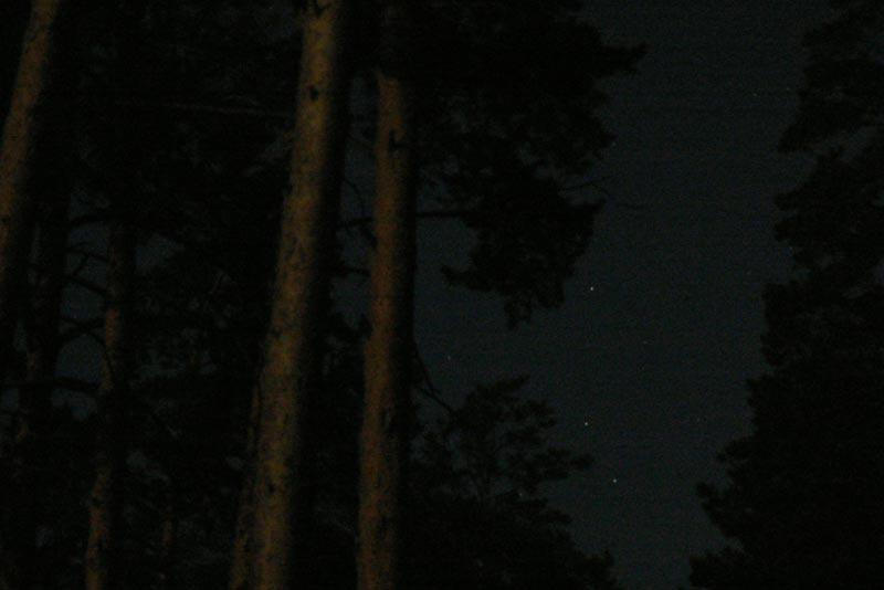 Сосны и звезды