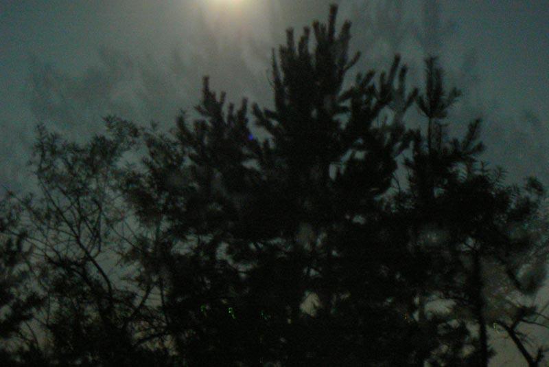 Тень от лунного света