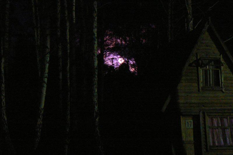 Ночная съемка. Луна